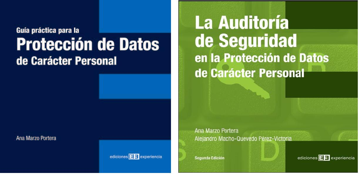 Proteccion de datos: Guia practica y auditoria